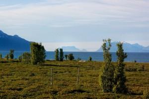 Erilainen juhannus Pohjois-Norjassa v. 2010 - yöttömän yön huumaa.