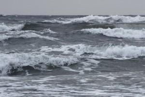 Myrsky- ja tyrskybongarit ehtivät vielä kytikselle maan eteläisimmän osan rannikolle. Kuva: aviking / panoramio Google maps