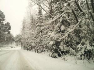 Kuva1: Helmikuu oli harvainaisen luminen etelärannikolla
