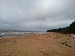 Kuva3: Jäästä eikä lumesta ollut enää tietoakaan Latvian rannikkolla Riianlahdella 17.2.