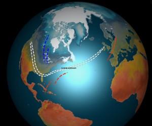 Kuva1: Mutkikas suihkuvirtaus talvella 2013-2014 on erottanut keskileveysasteiden lämpimämmän ja pohjoisen kylmemmän ilmamassan toisistaan. Selvästi tavanomaista kylmempää on ollut laajoilla alueilla Yhdysvalloissa, kun taas Eurooppa on ollut hyvin lauha ja paikoin ennätyssateinen.