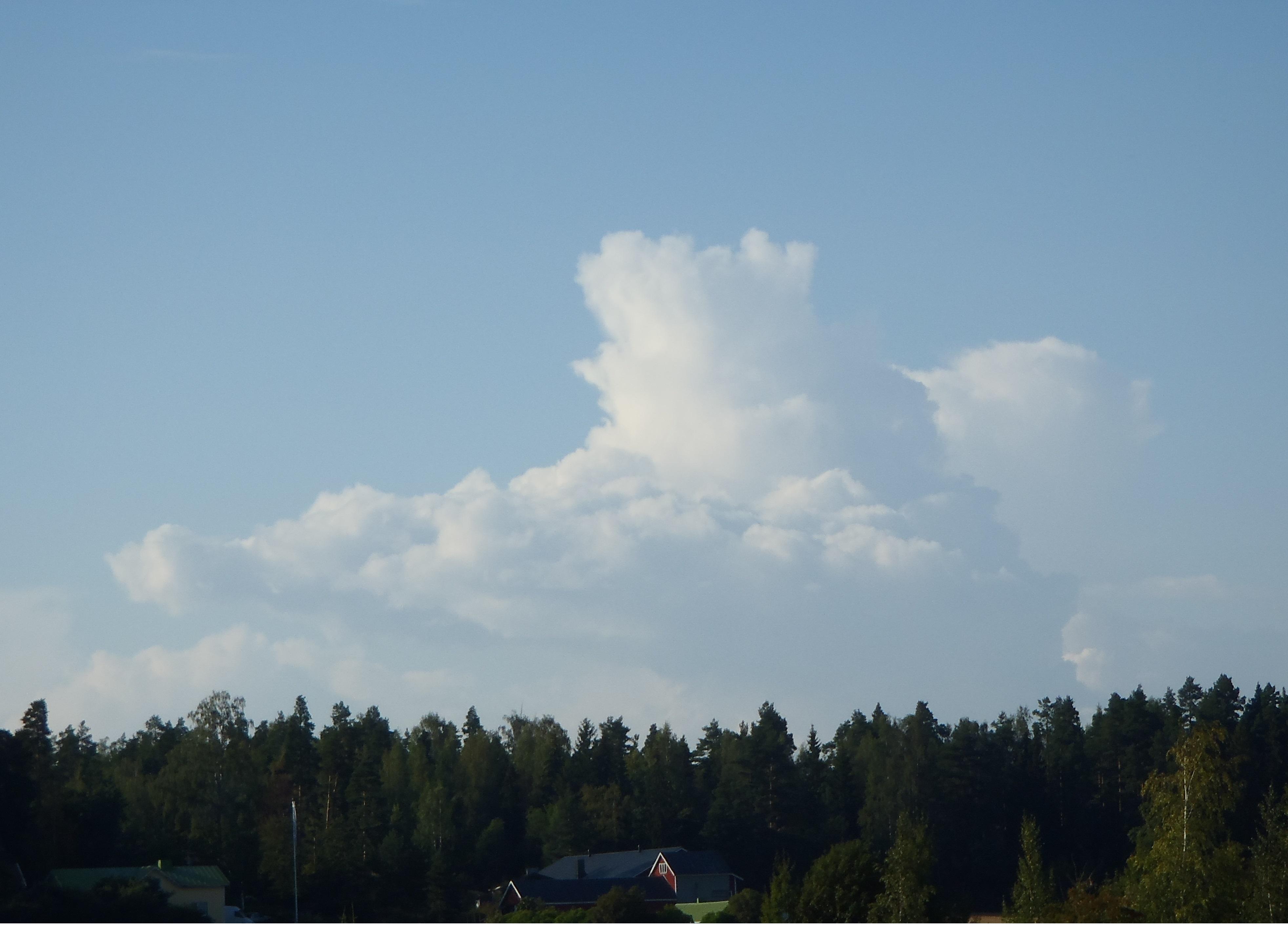 Ylemmässä kuvassa näkyy voimakkasti turvonnut kumpupilvi ja aika pian siitä onkin kehittymässä virkistävä iltapäivän sadekuuro. Alemmassa kuvassa näkyy kumpupilvestä muhinut kuuropilvi. Tämä pilvi on jo satanut ja ehkä ukkostanutkin.