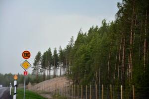 Kuva 7: Rajut ukkospuuskat alkavat juuri ennen Liesjärveä n. klo 17:30