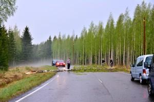 Kuva 11: Liesjärvellä ukkospuuskat olivat tehneet tuhojaan. Liikenne oli hetken aikaa poikki tielle kaatuneen koivun vuoksi.