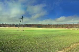 Kuva 6: Pääsiäissunnuntaina, 20.4., ruoho vihersi jo Turun Ruissalossa.