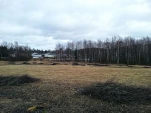 Kuva 6: Poikkeuksellisen vähäluminen Keski-Suomi  10.3. (Jyväskylä, Palokka)