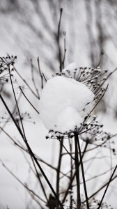 Lumikuormaa on isoa ja pientä, ja eri tavoin sitä voi kannatella. Kuva: smerlkal/flickr.