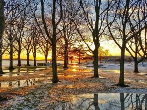Keväiset föhntuulipäivät ovat ensi viikolla mahdollisia Etelä- ja Keski-Suomessa. Lämpötila voi kohota yli +5 asteen. Tämä kuva Helsingin Eiranrannasta ti 9.2. jolloin lämpötila kohosi föhntuulen johdosta parhaimmillaan +9 asteen tuntumaan.