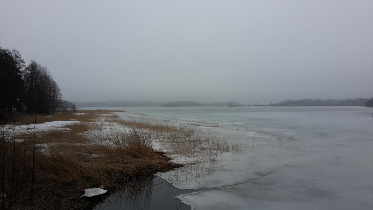 Keväthankia saa Espoosta etsiä