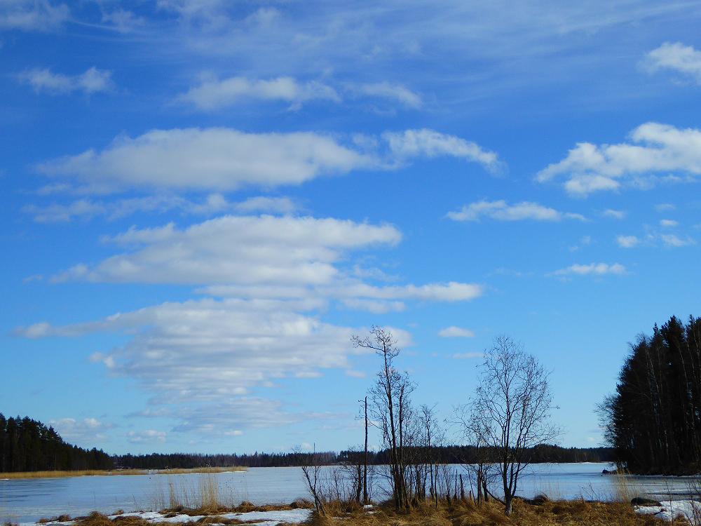 Viikonlopun takatalvea Liperisssä. Tuntui kuitenkin keväisemmältä kuin helmikuun harmaa kevätsää:)