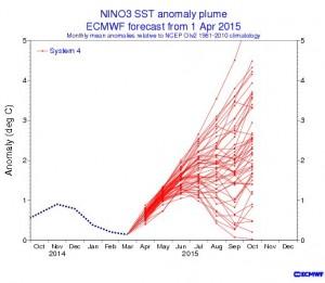 Kuva 3: El Niño -pluumiennuste. Ilmiön todennäköisyys kasvaa kesää kohden ja osa malleista saa loppuvuodeksi hyvinkin voimakkaan El Niñon. (kuva: ECMWF)