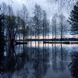 Kuva 2: Iijoki on noussut poikkeuksellisen korkealle Pudasjärvellä. (kuva: Tuomas, Oulu)