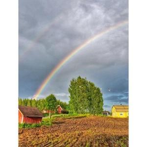 Kuva 7: Sade ja paiste vuorottelivat kesäkuussa (kuva: Markus M. / Onkiniemi)