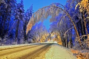 Kuva 14: Juupajoen Hyytiälään satoi marraskuun loppupuolella muutamassa vuorokaudessa 44 cm lunta. Sähkökatkoja esiintyi monin paikoin erityisesti keskisessä Suomessa tykkylumen vuoksi (kuva: Markus M / Valkeakoski)