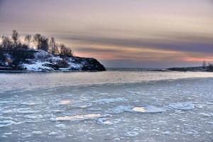 Kuva 1: Itämeren jäätalvesta muototui hyvin leuto. Suomenlahti lainehti jäättömänä tammikuun loppupuolellakin (kuva: Markus Mäntykannas / Helsinki, Eiranranta)
