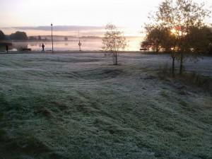 Kuva 3: Kuuraa Helsingin Arabianrannassa lokakuussa 2014 (kuva: Pekka Pouta)